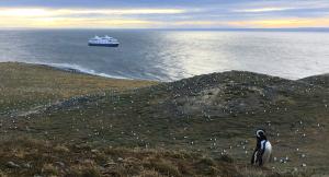 Expeditionskreuzfahrt auf der Ventus Australis zum Kap Horn (Chile)
