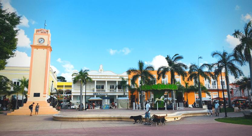 Top 5 Aktivitäten in Cozumel, México